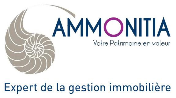 Ammonitia - Experts de la gestion immobilière